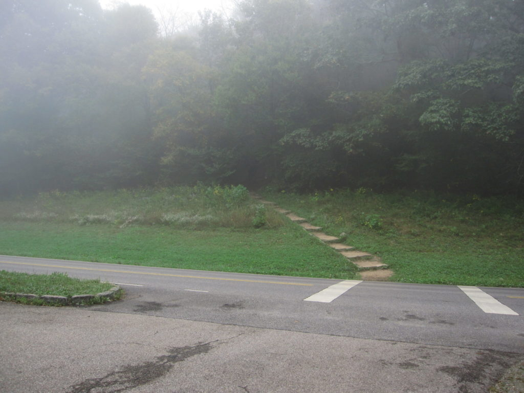 View of the trailhead from the parking lot