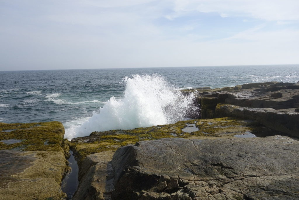 Acadia: Wave at Schoodic Point