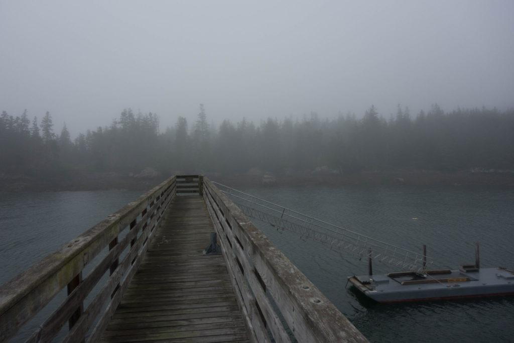 Acadia: Duck Harbor Landing Fog