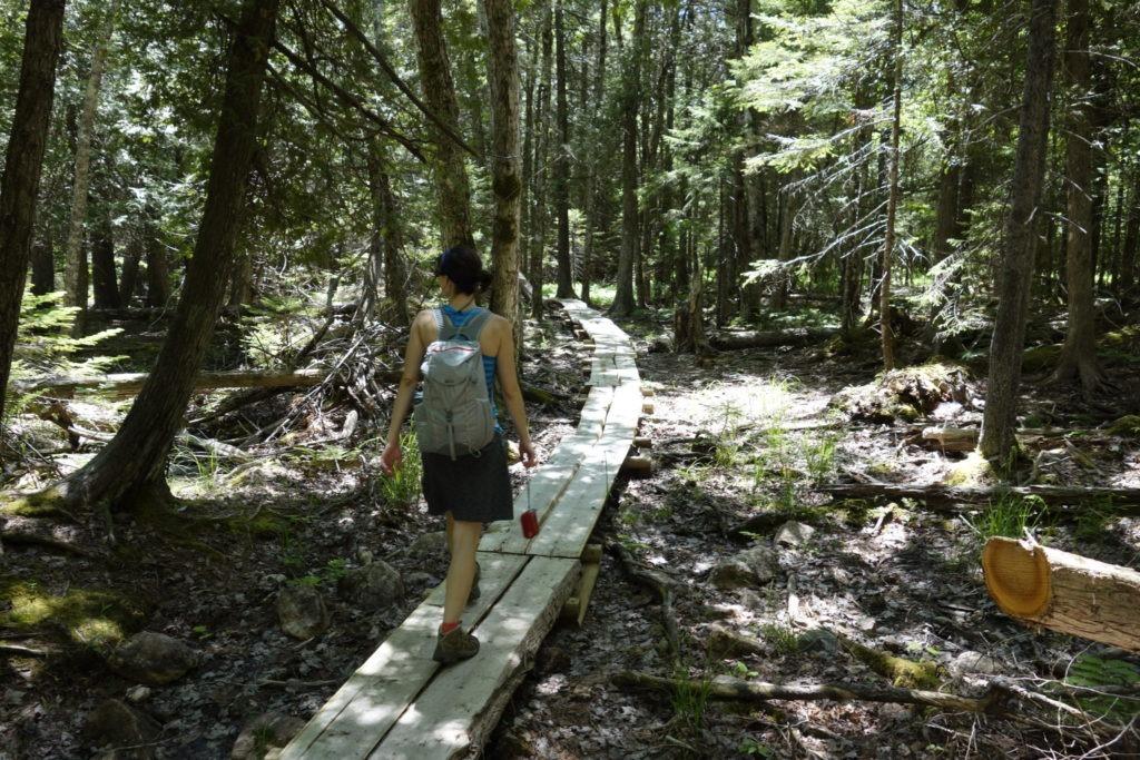 Acadia: K on boardwalk near Jordan Stream Path
