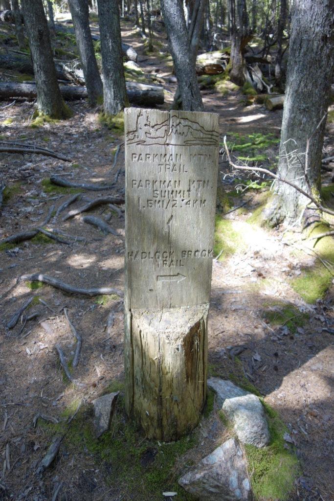 Acadia: Hadlock Brook Trailhead