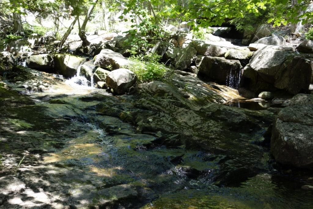Acadia: Small waterfalls on Jordan Stream