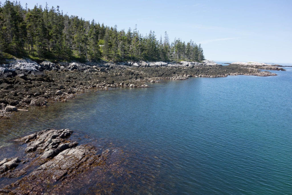 Acadia: Duck Harbor Campground Coastline