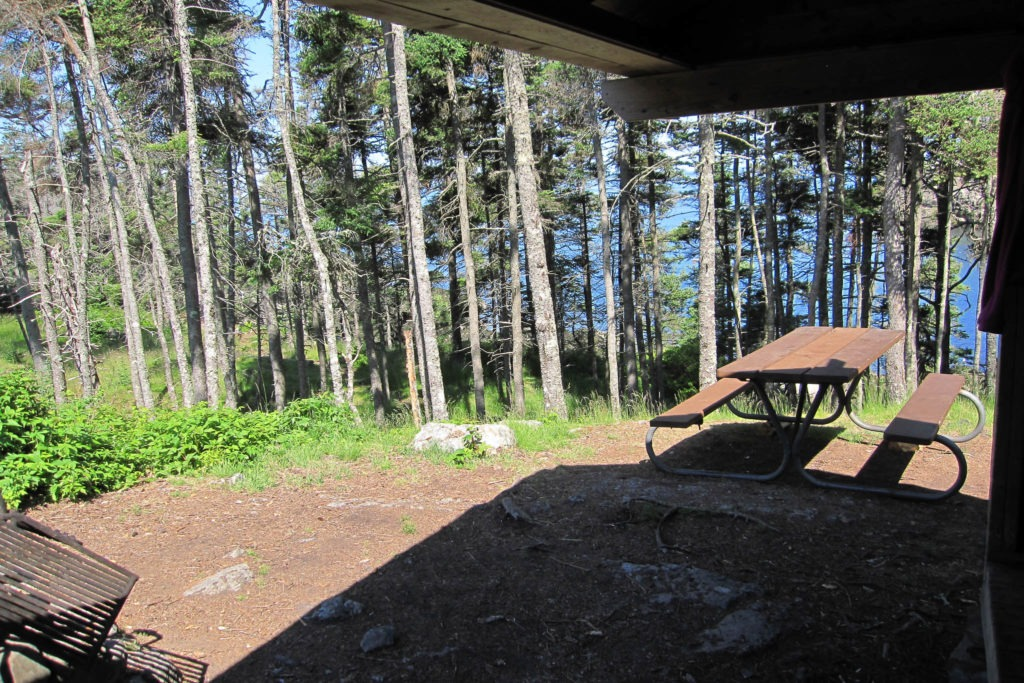 Acadia: Duck Harbor Campground Site 4 View