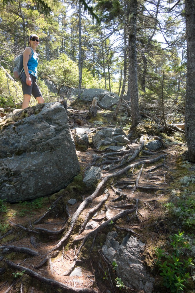 Acadia: Start of Duck Harbor Mountain Trail