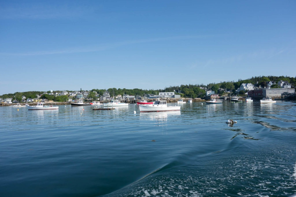 Acadia: Stonington from mail boat