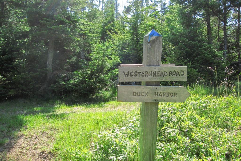 Acadia: Western Head Road