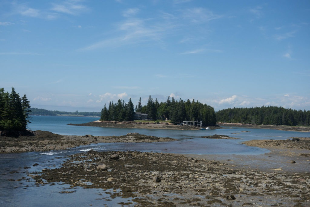Acadia: Initial View in Schoodic