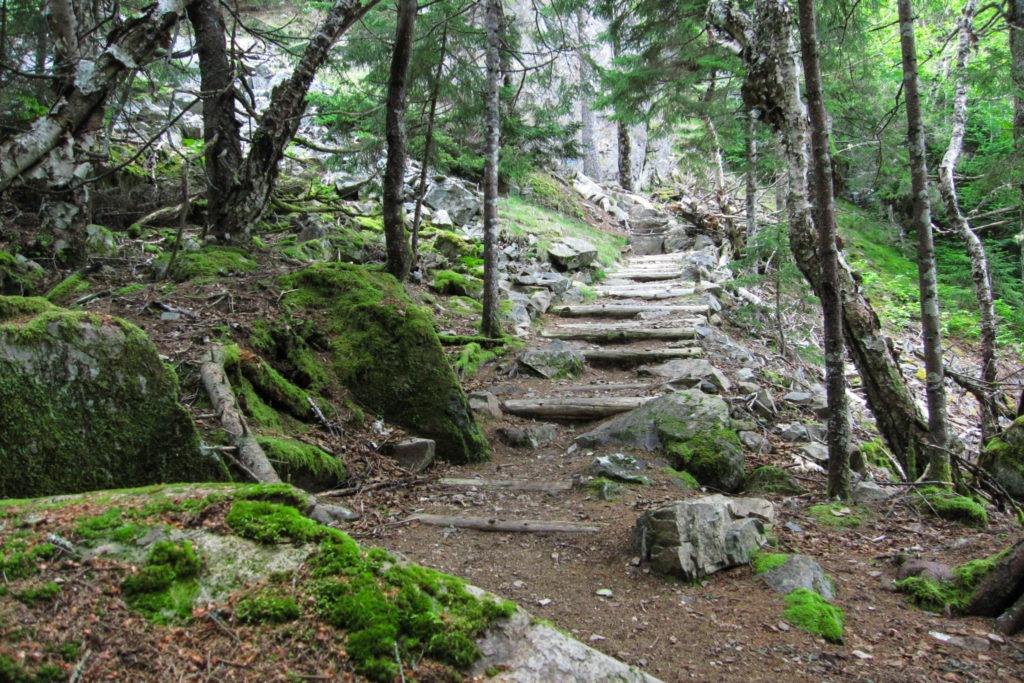 Stairs on Anvil Trail