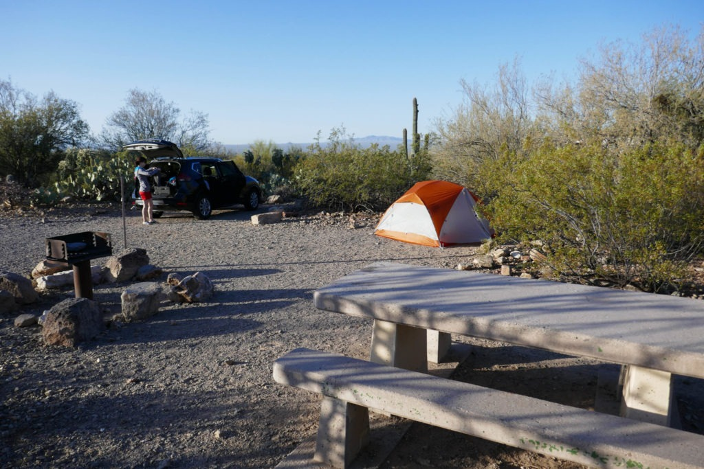 Saguaro: Our campsite at Gilbert Ray Campground