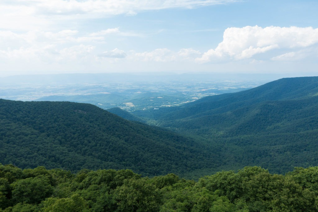 Shenandoah: Hawksbill Summit View