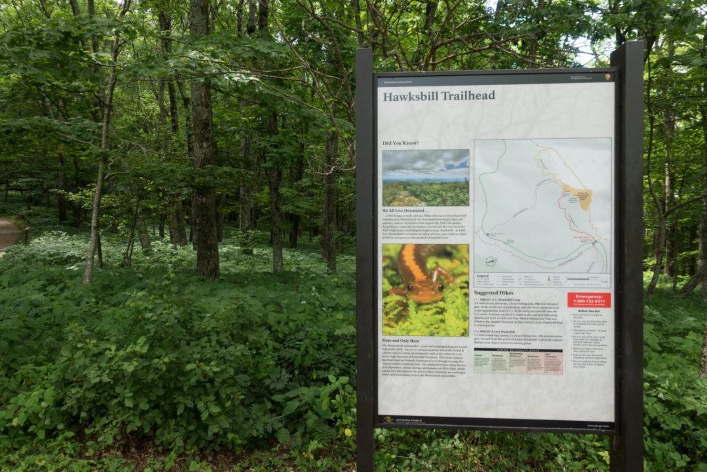 Shenandoah: Hawksbill Trailhead