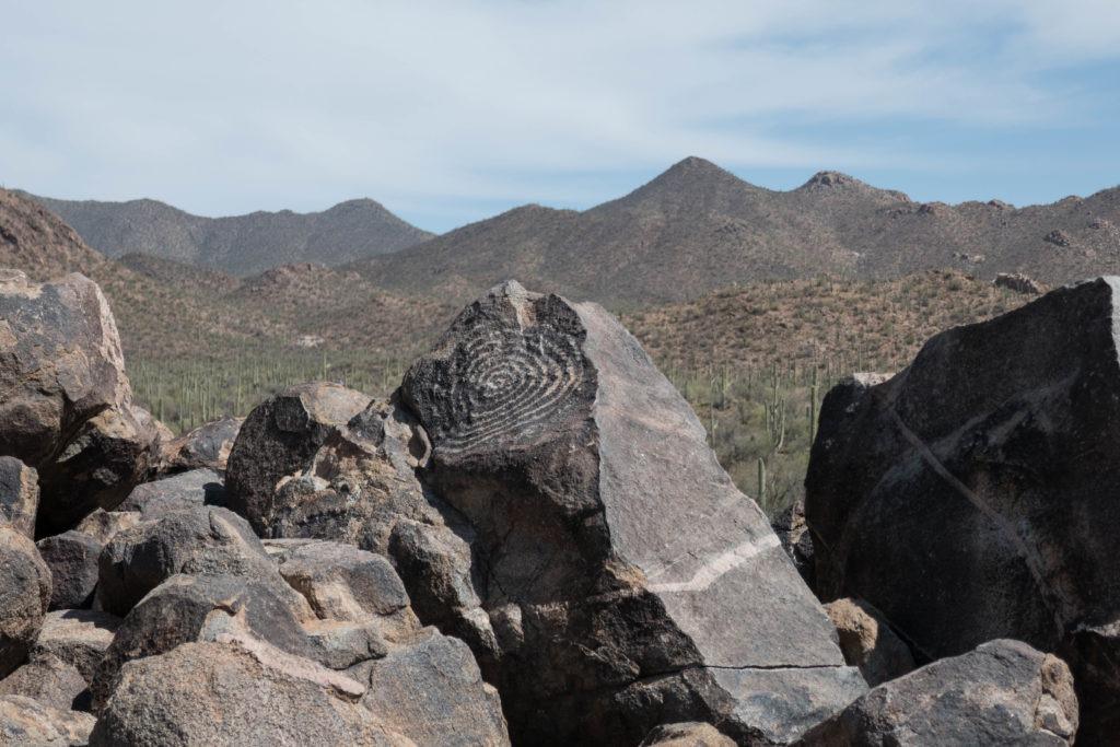 Saguaro: Signal Hill Spiral Petroglyphs