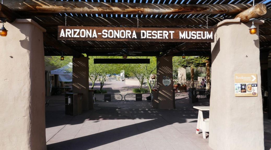 Saguaro: Arizona-Sonora Desert Museum