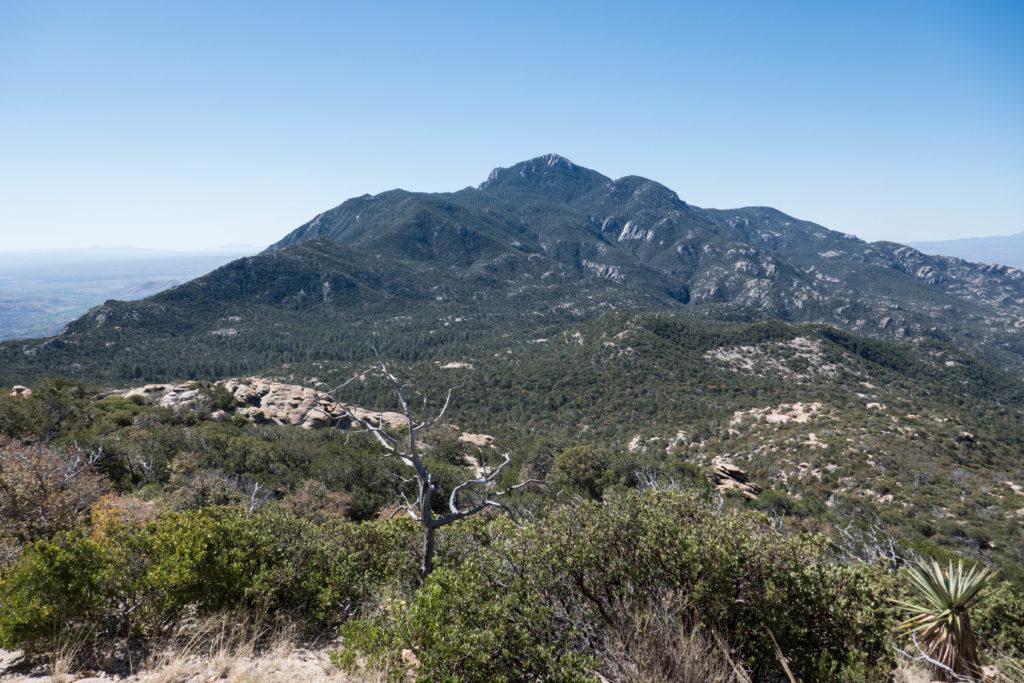 Saguaro: Rincon Peak from Heartbreak Ridge