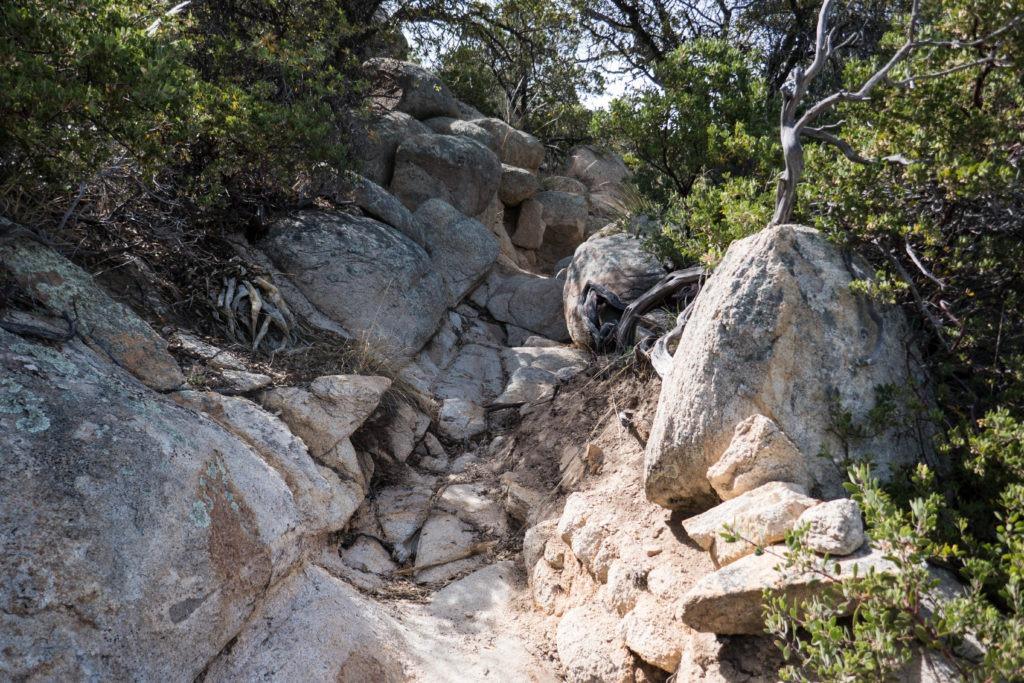 Saguaro: Rock scrambles on Miller Creek