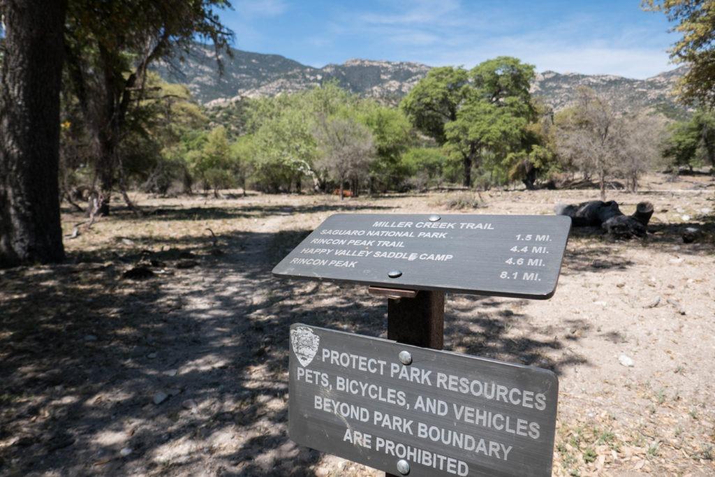 Saguaro: Miller Creek Trailhead Sign