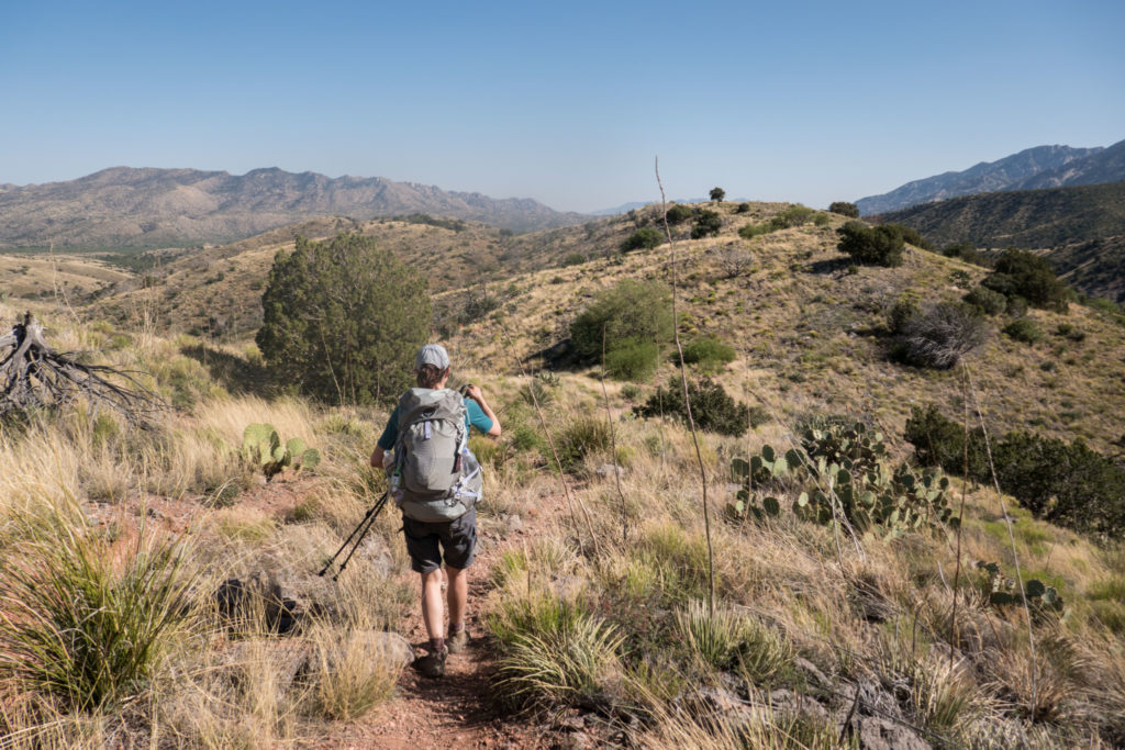 Saguaro: Hiking through Grasslands on Turkey Creek Trail in Coronado NF