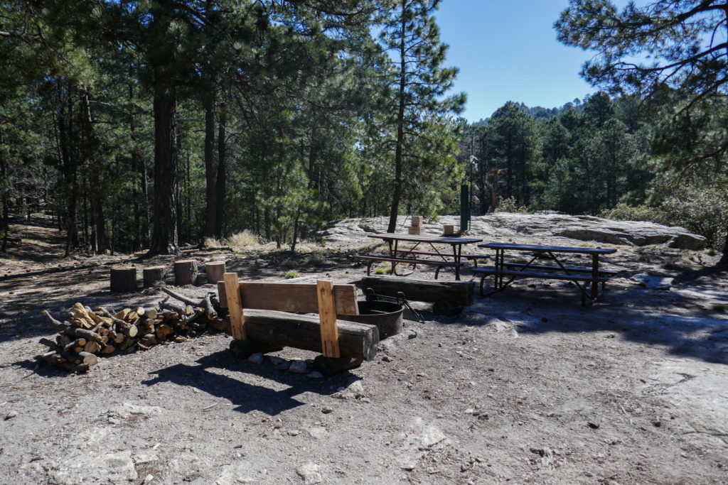 Saguaro: Picnic Benches and Fire Pit Near Manning Cabin