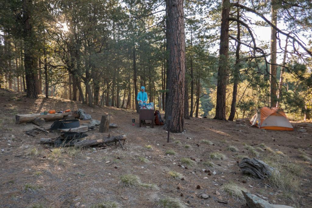 Saguaro: Manning Camp Site 2