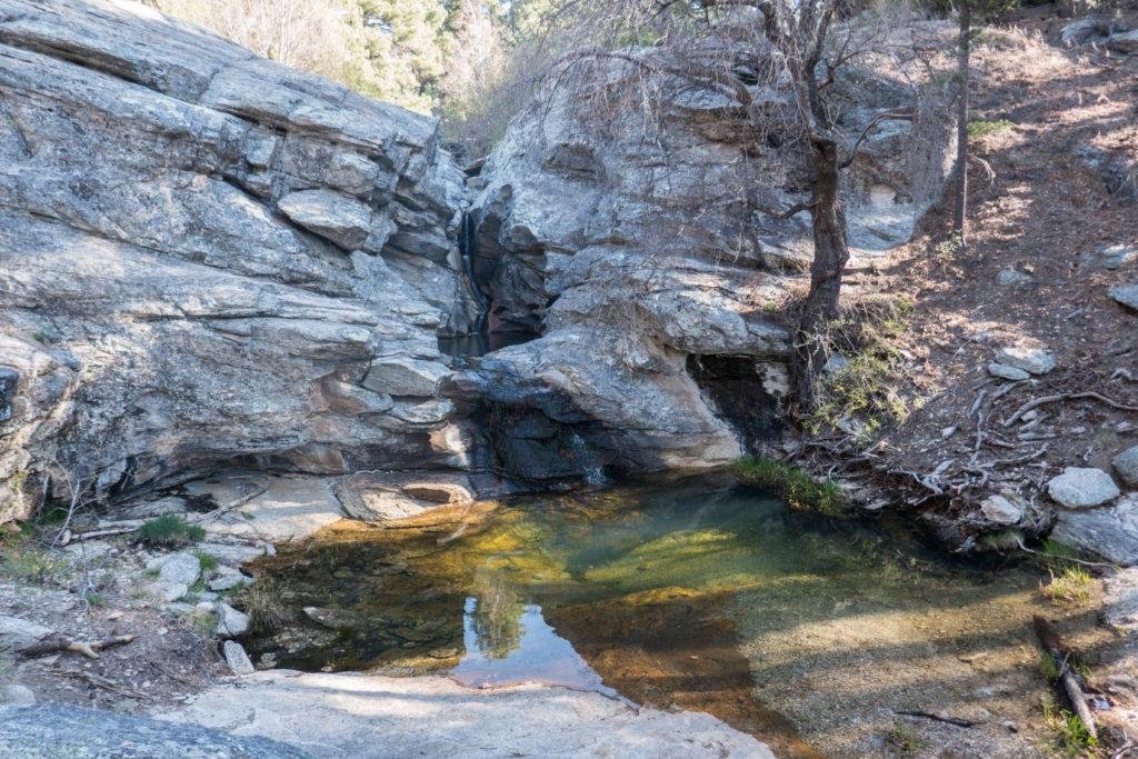 Saguaro: Manning Camp Water Source