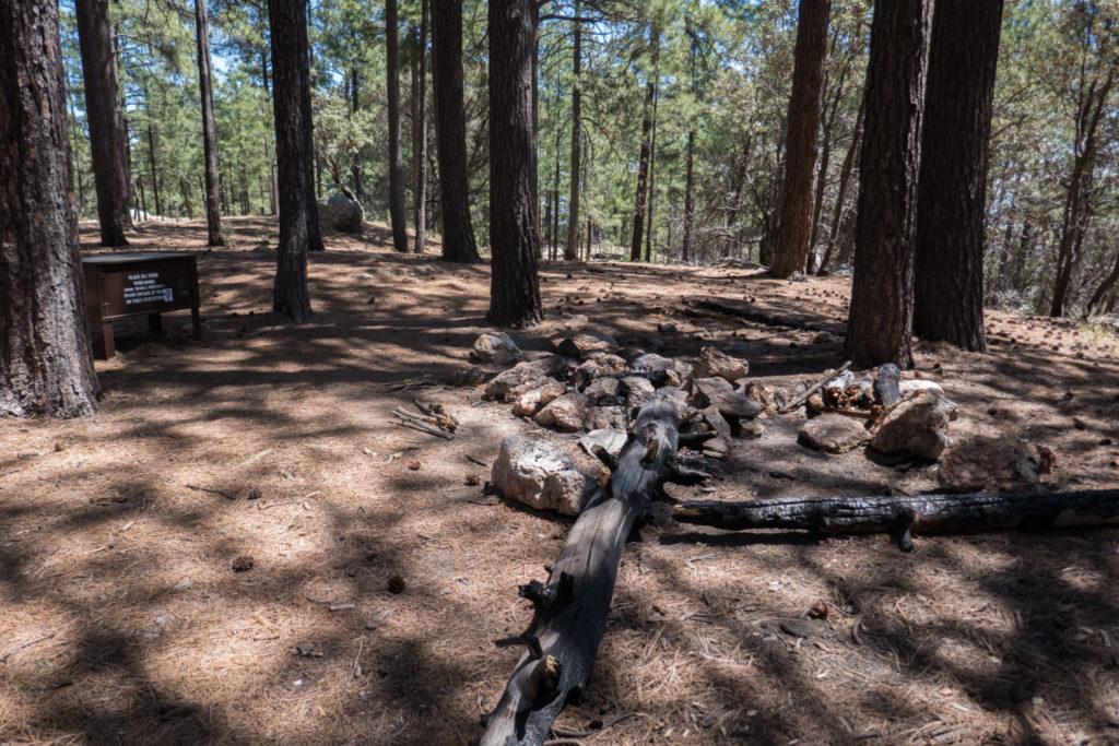 Saguaro: Spud Rock Campground Campsite