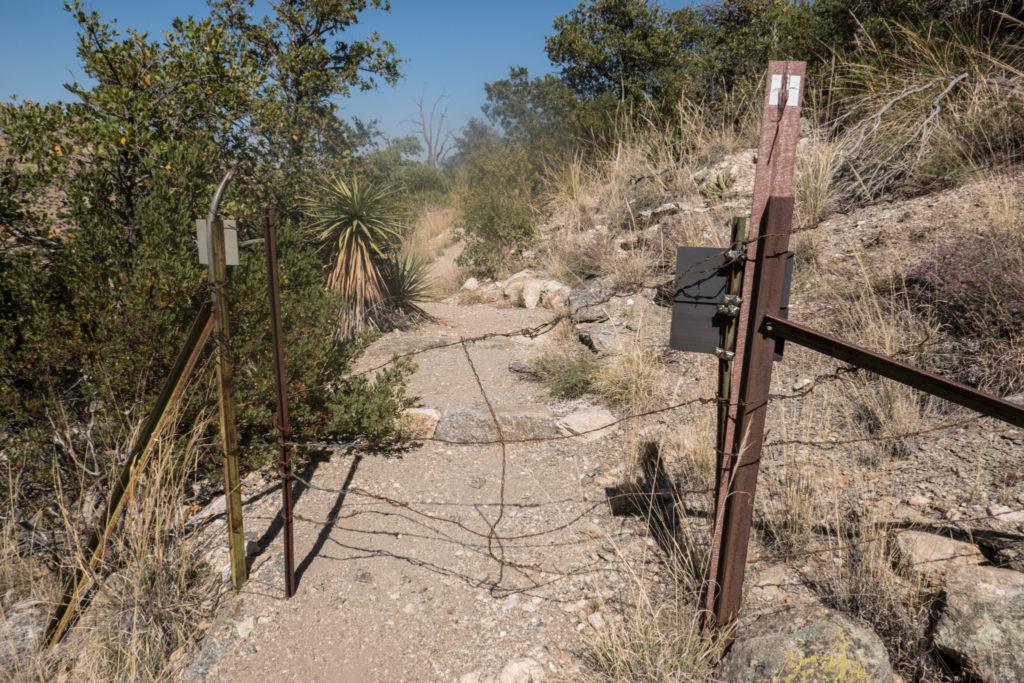 Saguaro: Boundary with Saguaro NP and Coronado NF on Turkey Creek Trail