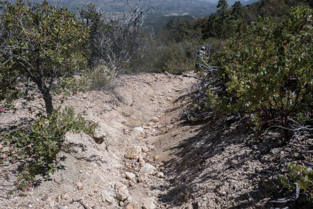 Saguaro: Turkey Creek Trail Erosion