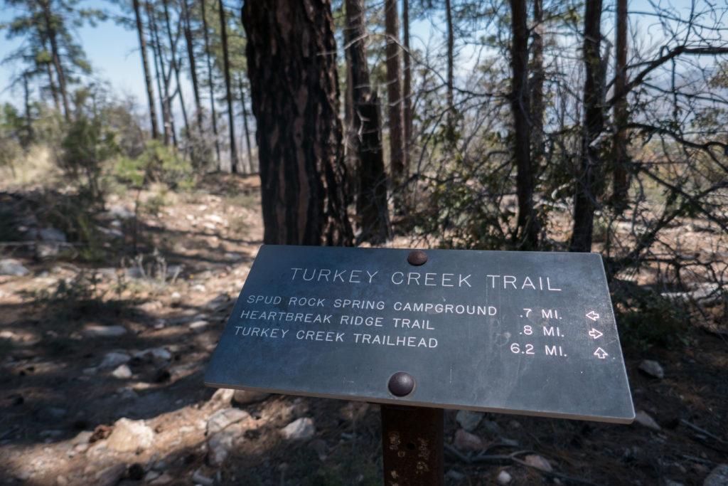 Saguaro: Turkey Creek Trailhead Sign