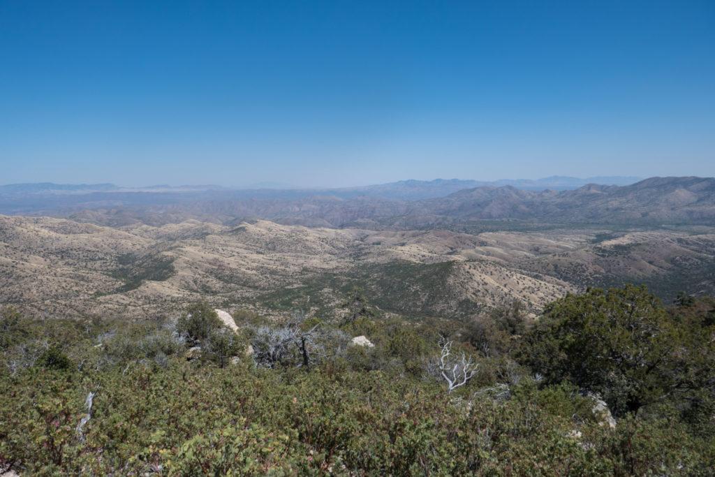 Saguaro: Turkey Creek Trail View