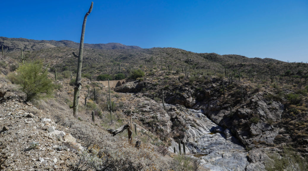 Saguaro: View of Garwood Dam