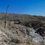 Saguaro: View of Garwood Dam