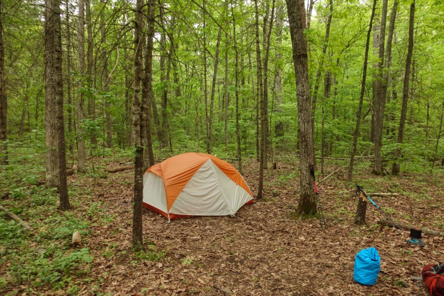 Shenandoah: Campsite Along Overall Run Trail