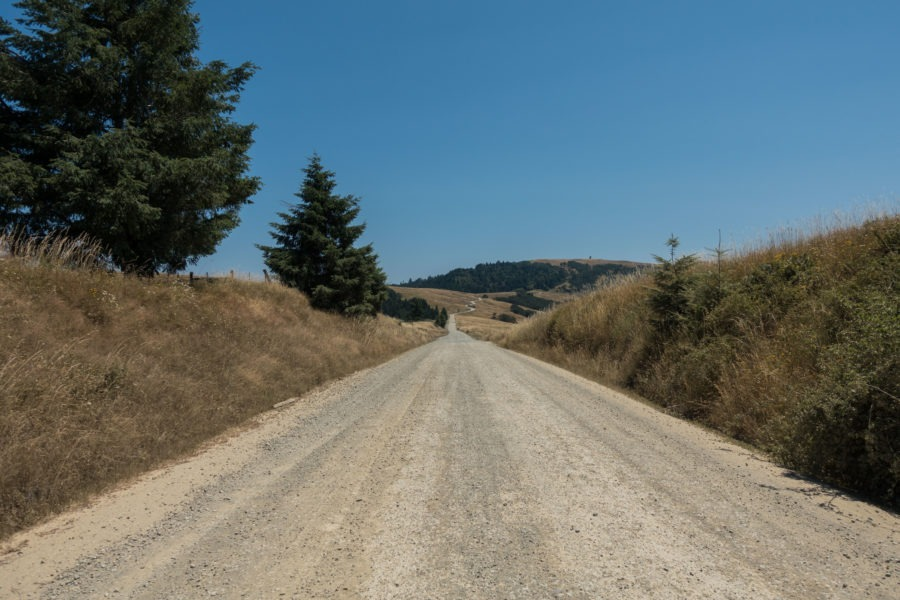 Redwood: Distance View on Bald Hills Road