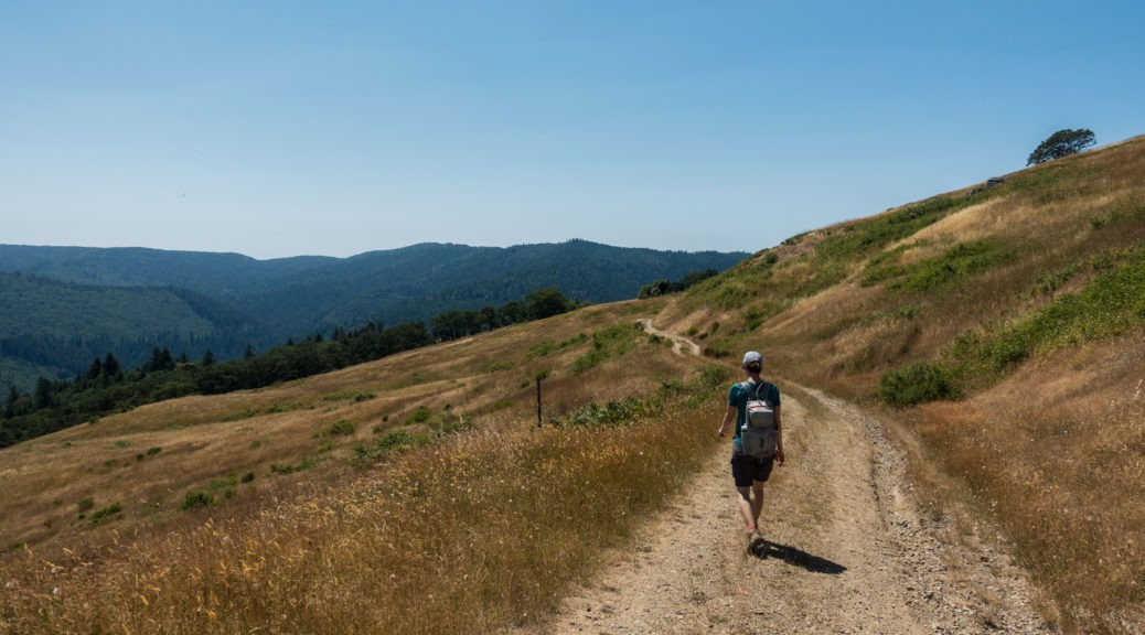 Redwood: Hiking Lyons Ranch