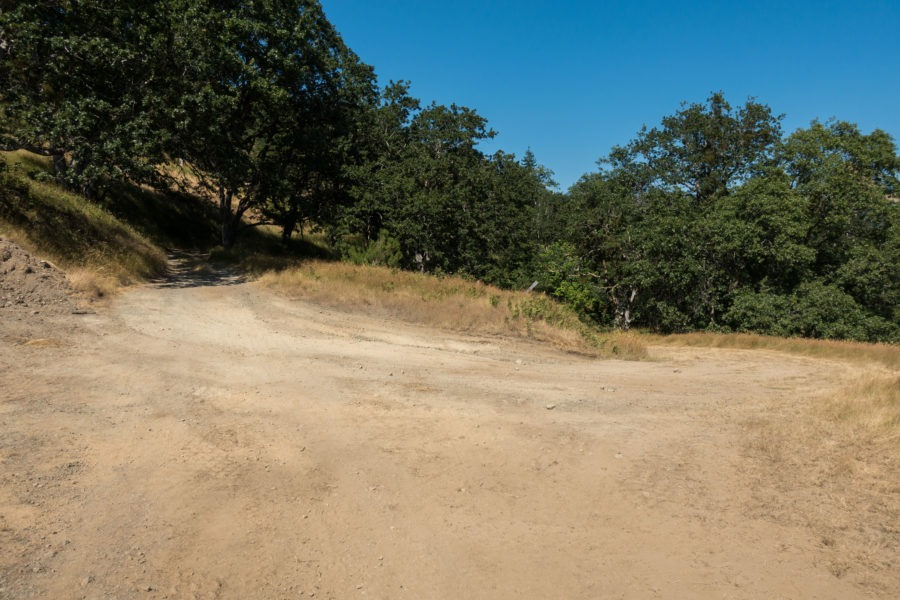 Redwood: Intersection of Lyons Ranch Trail and Ranch Road