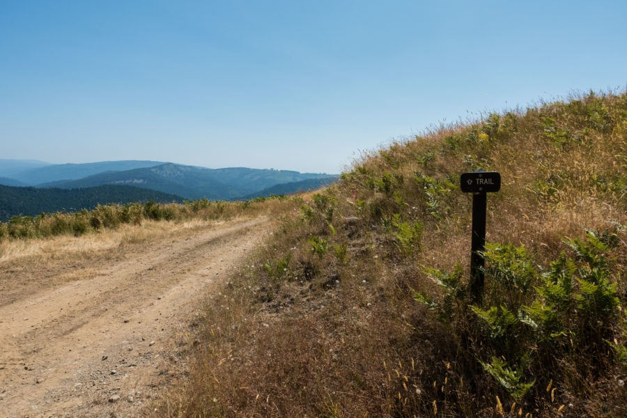 Redwood: Lyons Ranch Trail Sign