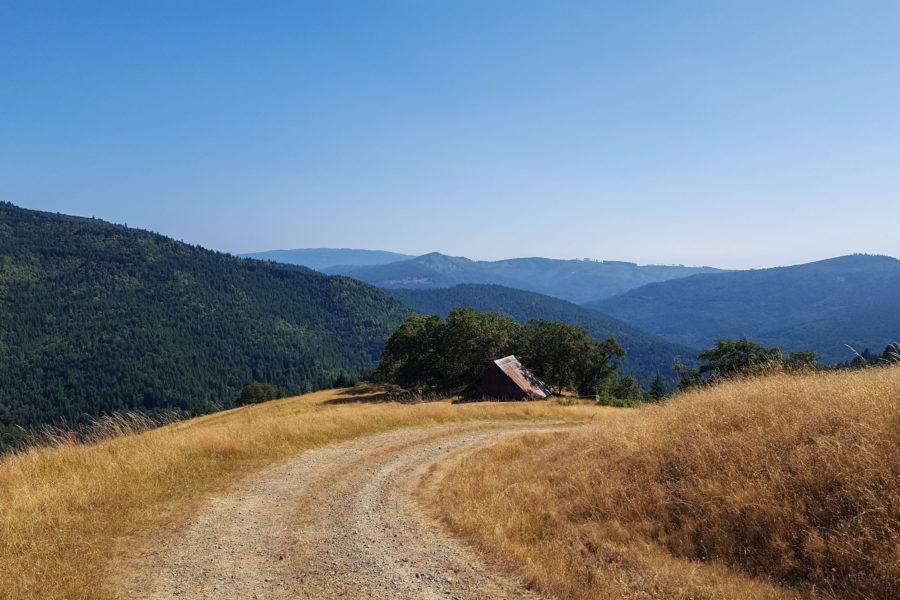 Redwood: View of Long Ridge Sheep Shed