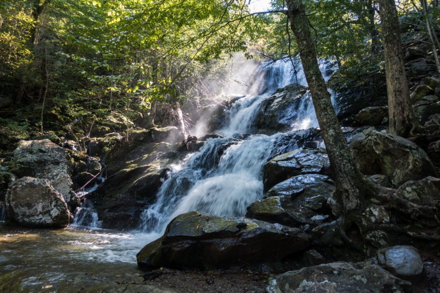 Shenandoah: Dark Hollow Falls