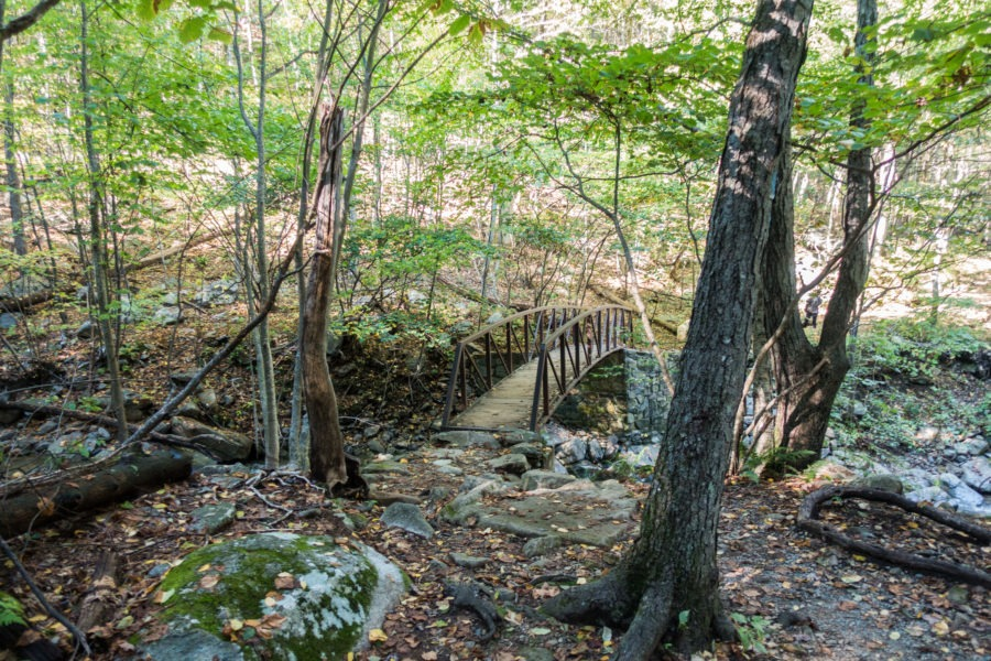 Shenandoah: Bridge Across Hogcamp Branch on Rose River Loop Trail