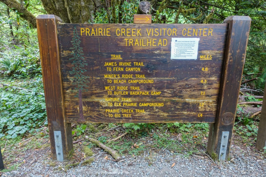 Redwood: Prairie Creek Trail Head Sign