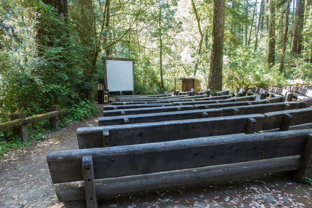 Redwood: Jedediah Smith Campground Amphitheater