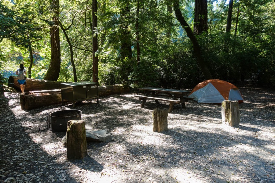 Redwood: Campsite 18 at Jedediah Smith Campground