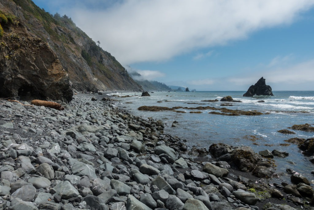 Redwood: Damnation Creek Coastline Left Side