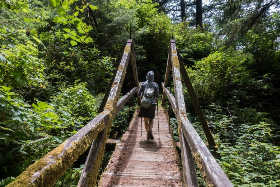 Redwood: Damnation Creek Trail Bridge