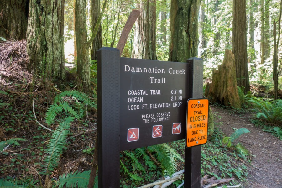 Redwood: Damnation Creek Trailhead Sign