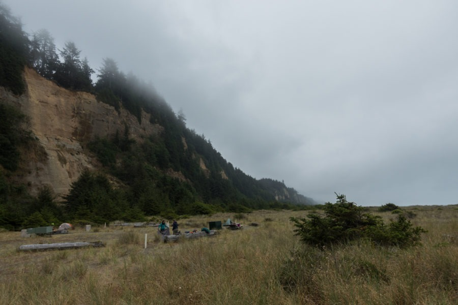 Redwood: Cliffs at Gold Bluffs Beach