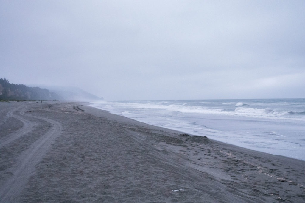 Redwood: Dreary Gold Bluffs Beach