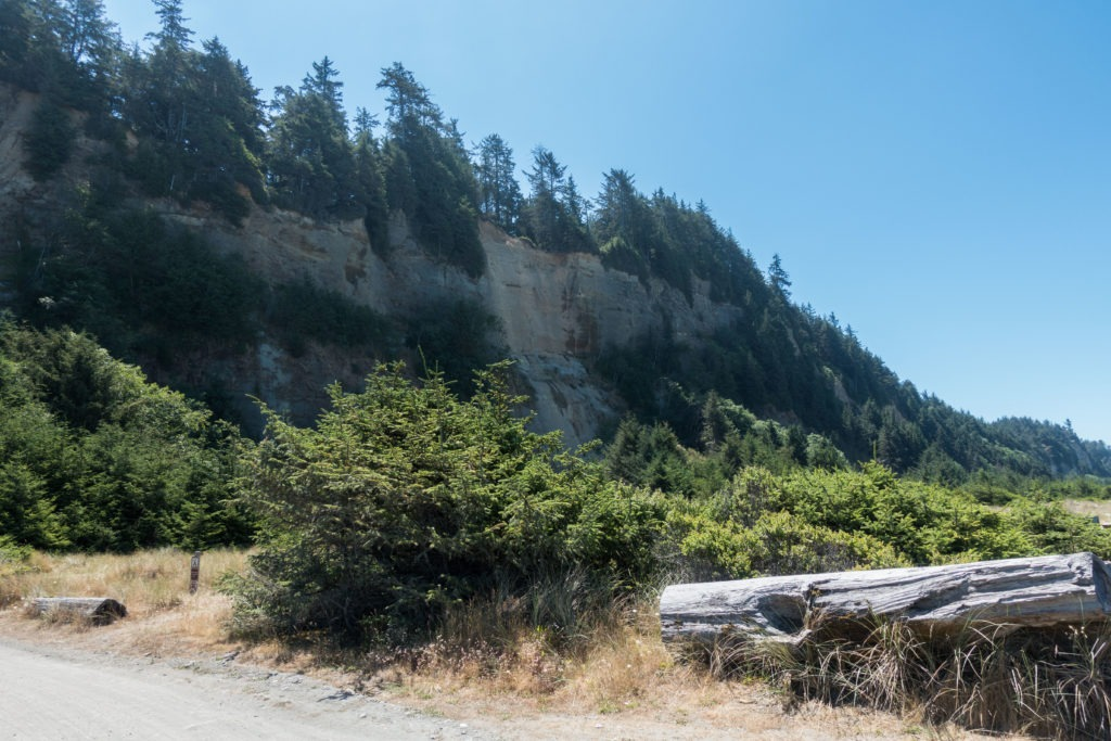 Redwood: Sunny Gold Bluffs Cliffs