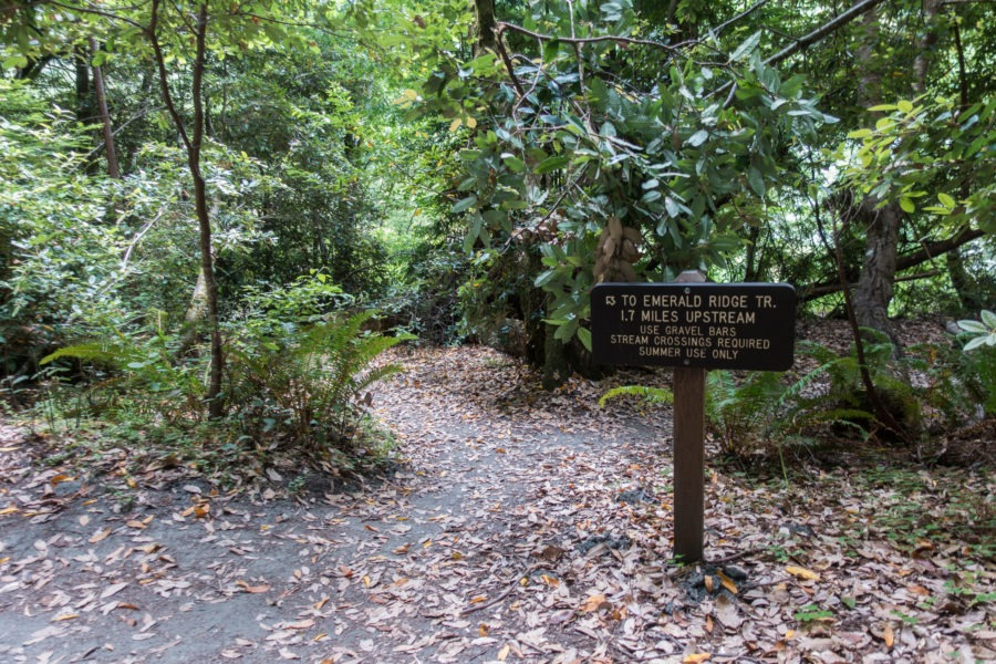 Redwood: Sign to Redwood Creek and Emerald Ridge Trail